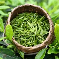 Что надо знать о зеленом чае
